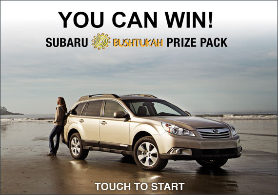 Subaru market research application allows tradeshow visitors to enter contest by leaving name and email address. I was the IU Graphic Designer on this kiosk application.